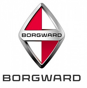 Automotive Manufacturer BORGWARD Group AG Officially Appoints