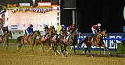 ENJOY THE GLAMOUR & THRILL OF DUBAI WORLD CUP AT THE MEYDAN HOTEL